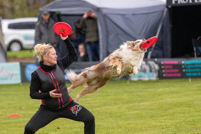 Certains chiens sont de véritables athlètes