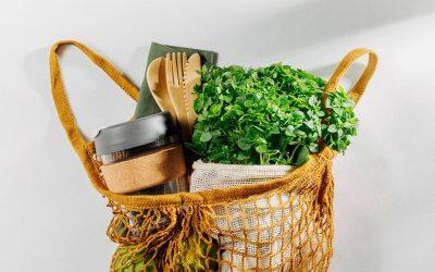 Un mode de vie bio : pourquoi opter pour les ustensiles biodégradables ?
