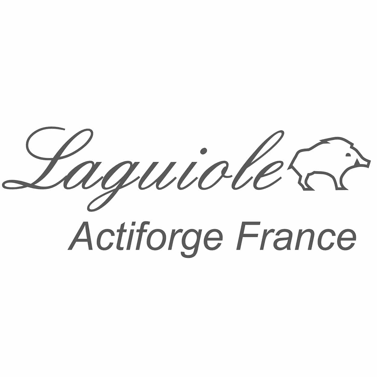 Logo Actiforge sur le Guide vers 100% Made in France