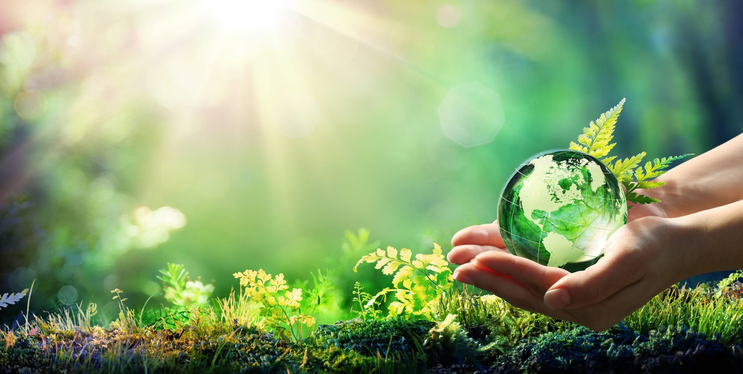 gestes écologiques