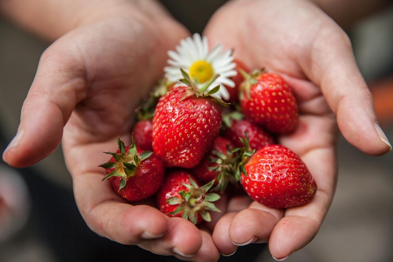 Comment apprendre à manger sainement ?