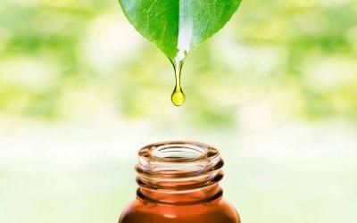 Des soins plus naturels avec la naturopathie