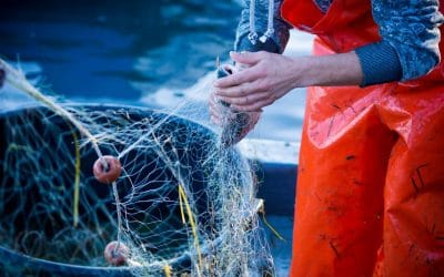 Quand nos filets de pêche font la mode