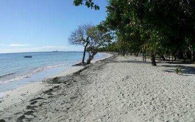 Développement durable en Guadeloupe, l'île de beauté