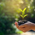 Adopter un mode de vie plus écolo sur Prends en soin