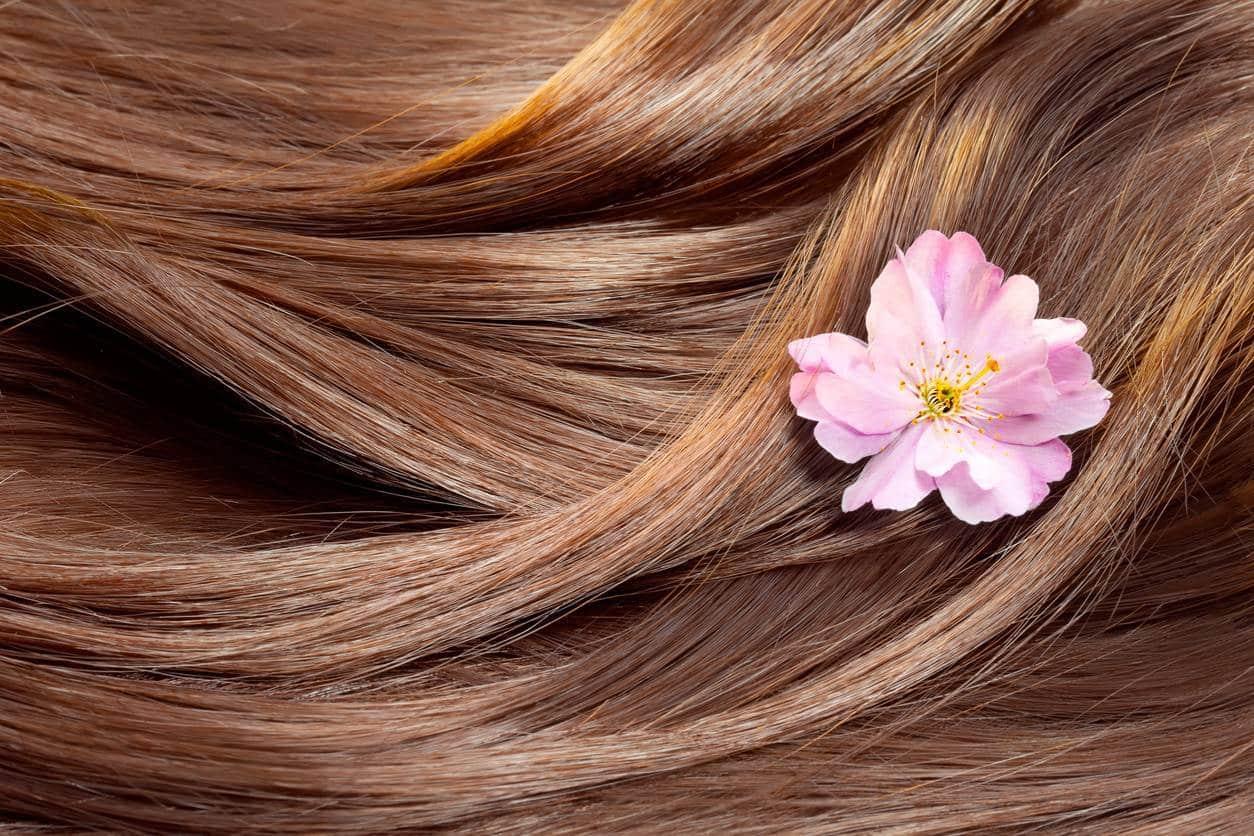 coloration végétale des cheveux