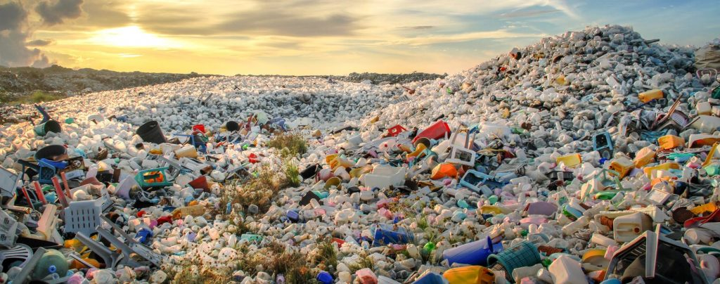 Les emballages alimentaires réutilisables désengorgent nos décharges